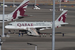 肉食獣さんが、羽田空港で撮影したカタールアミリフライト A319-133X CJの航空フォト(写真)