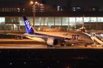 板付さんが、福岡空港で撮影した全日空 787-881の航空フォト(写真)