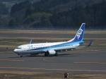ヒロポンさんが、福島空港で撮影した全日空 737-881の航空フォト(写真)