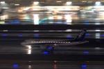 KAZKAZさんが、羽田空港で撮影した全日空 A320-211の航空フォト(写真)