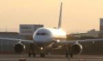 新城良彦さんが、伊丹空港で撮影した全日空 A320-211の航空フォト(写真)