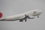 白銀RYUさんが、成田国際空港で撮影した日本航空 747-446の航空フォト(写真)