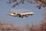 多楽さんが、成田国際空港で撮影したエティハド航空 A340-541の航空フォト(写真)
