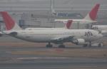 白銀RYUさんが、羽田空港で撮影した日本航空 A300B4-622Rの航空フォト(写真)