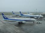 シフォンさんが、那覇空港で撮影した全日空 767-381の航空フォト(写真)