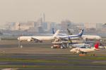 mameshibaさんが、羽田空港で撮影した日本航空 777-346の航空フォト(写真)