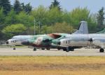 Peko mamaさんが、入間飛行場で撮影した航空自衛隊 YS-11A-402EAの航空フォト(写真)