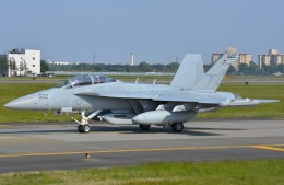 デルタおA330さんが、横田基地で撮影したアメリカ海軍 EA-18G Growlerの航空フォト(写真)