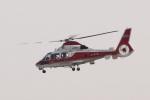 多楽さんが、仙台空港で撮影した山形県消防防災航空隊 AS365N2 Dauphin 2の航空フォト(写真)