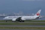 VIPERさんが、関西国際空港で撮影した日本航空 787-8 Dreamlinerの航空フォト(写真)