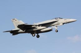 たまさんが、厚木飛行場で撮影したアメリカ海軍 F/A-18E Super Hornetの航空フォト(写真)