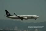 かみきりむしさんが、関西国際空港で撮影した全日空 737-881の航空フォト(写真)