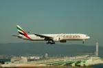 かみきりむしさんが、関西国際空港で撮影したエミレーツ航空 777-36N/ERの航空フォト(写真)