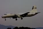 tsubameさんが、福岡空港で撮影した国土交通省 航空局 YS-11-104の航空フォト(写真)