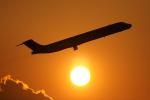 いたみんさんが、伊丹空港で撮影した日本エアシステム MD-81 (DC-9-81)の航空フォト(写真)