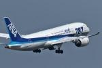 comさんが、羽田空港で撮影した全日空 787-881の航空フォト(写真)