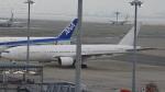 kazuhikoさんが、羽田空港で撮影した日本航空 777-246の航空フォト(写真)
