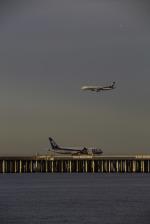 chalk2さんが、羽田空港で撮影した全日空 787-8 Dreamlinerの航空フォト(写真)