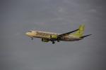 chalk2さんが、羽田空港で撮影したソラシド エア 737-86Nの航空フォト(写真)