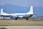 md11jbirdさんが、米子空港で撮影した航空自衛隊 YS-11-105Pの航空フォト(写真)