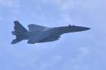 md11jbirdさんが、米子空港で撮影した航空自衛隊 F-15J Eagleの航空フォト(写真)