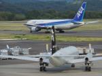 いもたろうさんが、高松空港で撮影したエアロラボ YS-11A-200の航空フォト(写真)