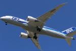 Fly Yokotayaさんが、伊丹空港で撮影した全日空 787-8 Dreamlinerの航空フォト(写真)