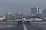 EarthScapeさんが、伊丹空港で撮影した日本航空 DC-10-40Iの航空フォト(写真)