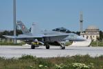 Tomo-Papaさんが、コンヤ空港で撮影したスイス空軍 F/A-18D Hornetの航空フォト(写真)