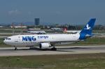Tomo-Papaさんが、アタテュルク国際空港で撮影したMNGエアラインズ A300C4-605Rの航空フォト(写真)