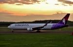 バーダーさんさんが、新千歳空港で撮影したハワイアン航空 767-33A/ERの航空フォト(写真)
