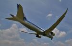 リリココさんが、伊丹空港で撮影した全日空 787-881の航空フォト(写真)