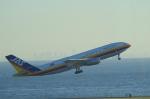 fukucyanさんが、羽田空港で撮影した日本エアシステム A300B4-203の航空フォト(写真)