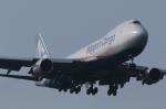 マスターMさんが、成田国際空港で撮影した日本貨物航空 747-8KZF/SCDの航空フォト(写真)