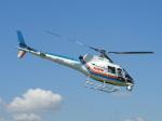 ヘリオスさんが、東京ヘリポートで撮影した東邦航空 AS350B Ecureuilの航空フォト(写真)