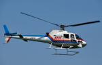 チャーリーマイクさんが、東京ヘリポートで撮影した東邦航空 AS350B Ecureuilの航空フォト(写真)