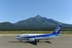 なないろさんが、利尻空港で撮影したANAウイングス 737-5L9の航空フォト(写真)