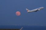 VIPERさんが、羽田空港で撮影した日本航空 767-346の航空フォト(写真)