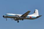 いっくんさんが、名古屋飛行場で撮影した航空自衛隊 YS-11A-402NTの航空フォト(写真)