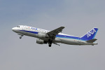triton@blueさんが、岡山空港で撮影した全日空 A320-211の航空フォト(写真)