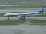 たみぃさんが、羽田空港で撮影した全日空 A321-131の航空フォト(写真)