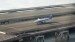 NAOTOさんが、羽田空港で撮影した全日空 A320-211の航空フォト(写真)