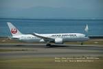 かみきりむしさんが、中部国際空港で撮影した日本航空 787-846の航空フォト(写真)