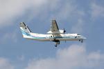 utarou on NRTさんが、那覇空港で撮影した海上保安庁 DHC-8-315 Dash 8の航空フォト(写真)