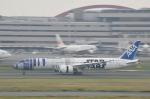 pepeA330さんが、羽田空港で撮影した全日空 787-9の航空フォト(写真)