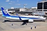 JA8961RJOOさんが、伊丹空港で撮影した全日空 737-881の航空フォト(写真)