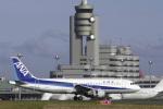 senyoさんが、羽田空港で撮影した全日空 A320-211の航空フォト(写真)