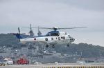 こびとさんさんが、横須賀基地で撮影した陸上自衛隊 EC225LP Super Puma Mk2+の航空フォト(写真)