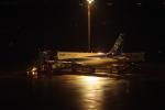 中村ひろのりさんが、羽田空港で撮影した全日空 A320-211の航空フォト(写真)