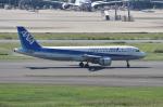 ぎんじろーさんが、羽田空港で撮影した全日空 A320-211の航空フォト(写真)